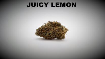 Juicy Lemon Titel