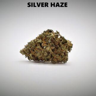 Silver Haze Produkt