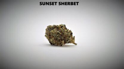 Sunset Sherbet Produkt